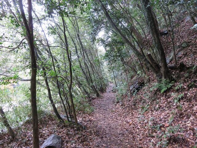 愛岐トンネル群のピクニック河原へ向かう道