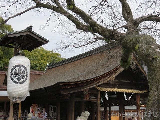 稲沢市国府宮神社の拝殿