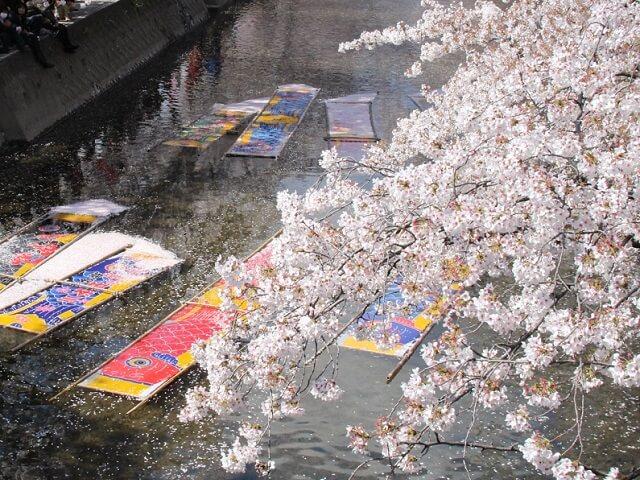 愛知県岩倉市五条川に浮かぶ鯉のぼり