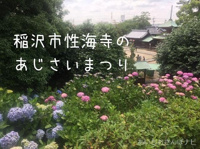稲沢市性海寺歴史公園のあじさい