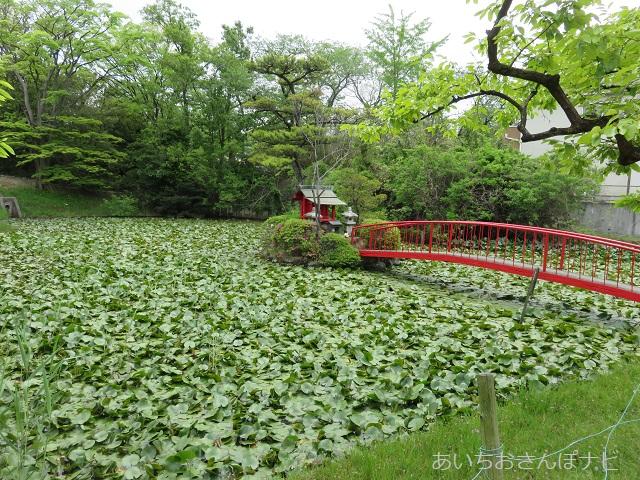 桶狭間長福寺の弁天池