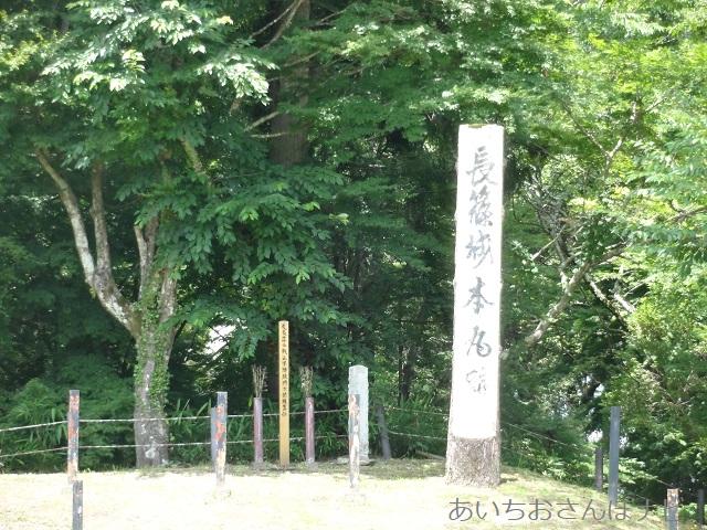 愛知県新城市にある長篠城本丸跡