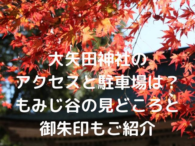 岐阜県美濃市大矢田神社の紅葉