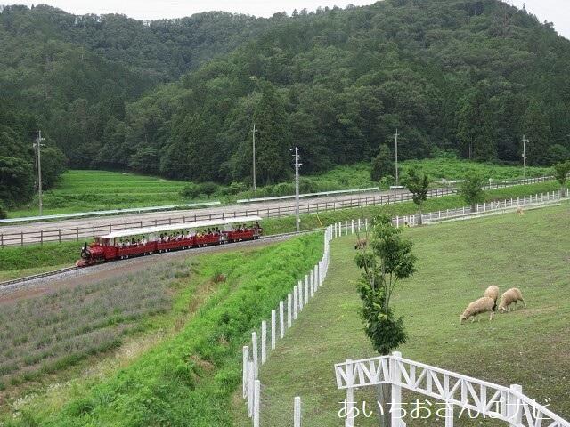 ローザンベリー多和田の園内を走るローザン鉄道