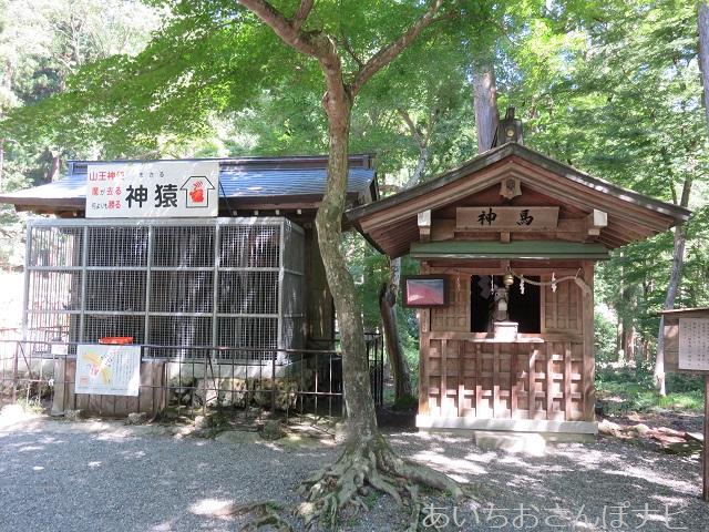 滋賀県大津市坂本にある日吉大社の神馬舎と神猿舎