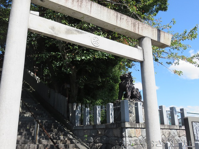 愛知県常滑市の神明社