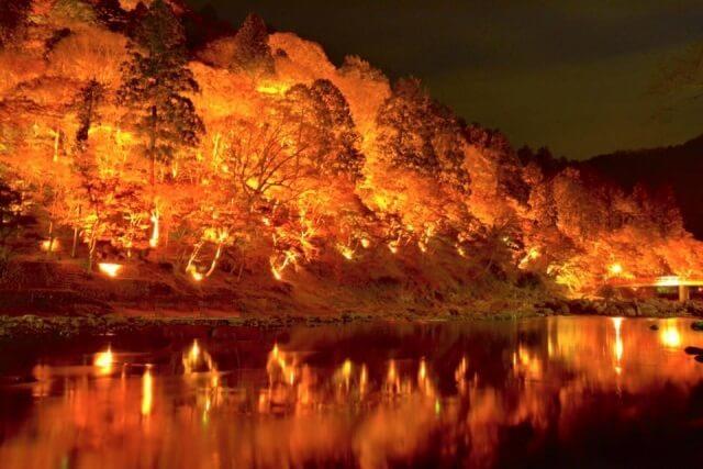 豊田市香嵐渓のライトアップ