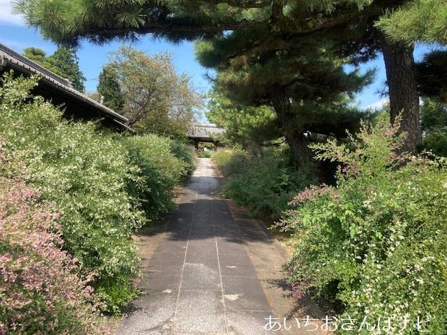 愛知県稲沢市の円光禅寺(萩寺)の参道