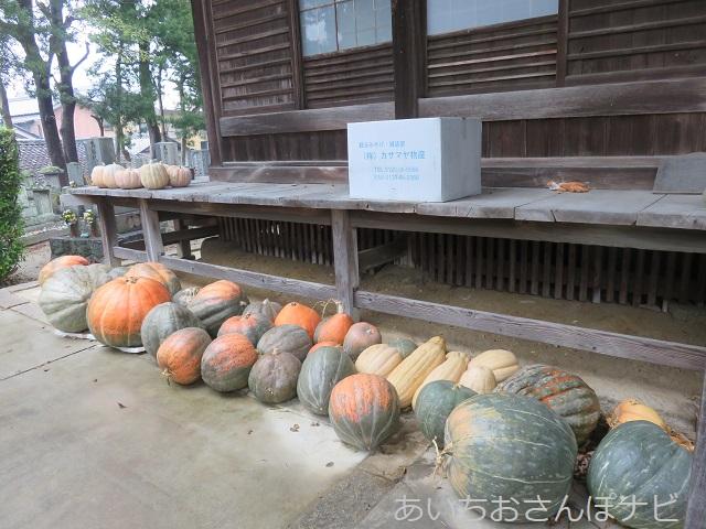愛知県西尾市かぼちゃ寺に置かれたかぼちゃ