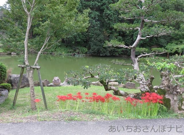 愛知県小牧市福厳寺前の池